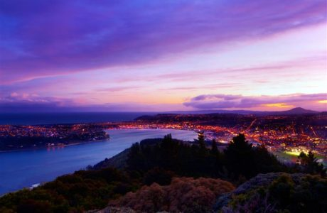 5 Day Dunedin, Queenstown and Milford Tour5 Day Dunedin, Queenstown and Milford Tour