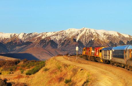 TranzAlpine train Tours