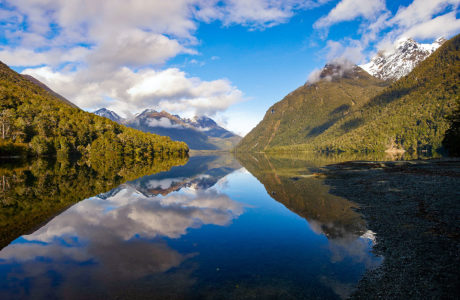 Tours including Fiordland