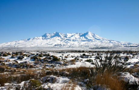 4 Day Central North Island Tour