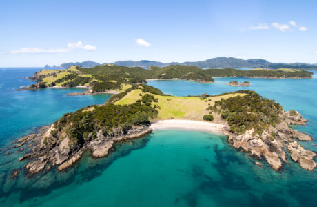 Bay of Islands group tours