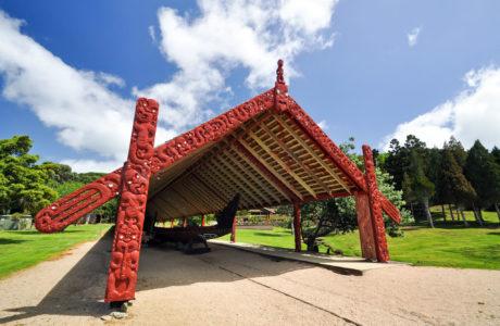 North Island Tours
