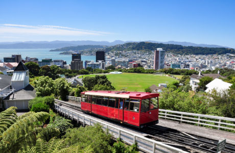 y Classic New Zealand Panorama Guided Tour