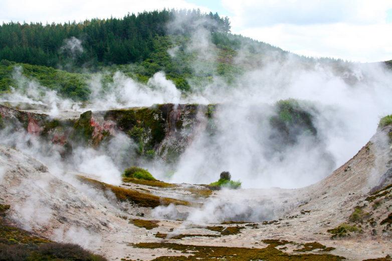Steam, Taupo