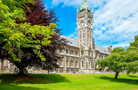 Tours including Dunedin