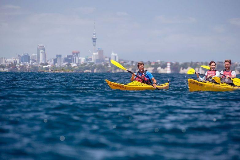 Auckland-kayak-2