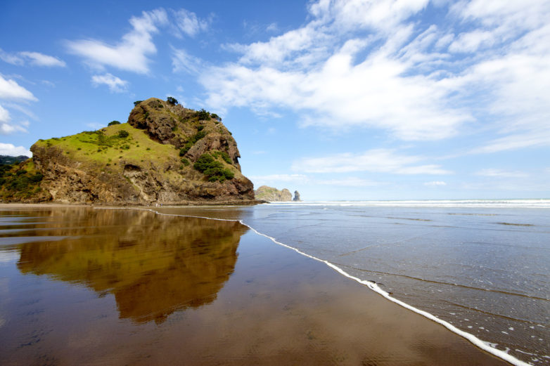 Bethells Beach,Auckland, New Zealand