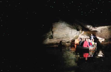 Te Anau Glowworm Caves Tour