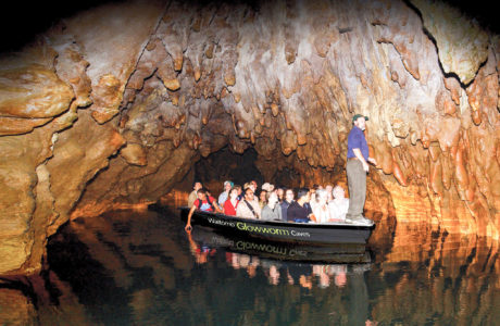 Waitomo Glowworm Caves, North Island Tours