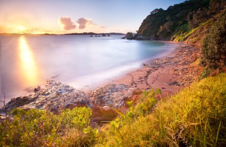 Bay of Islands Day Tour including Historic Russell Tour