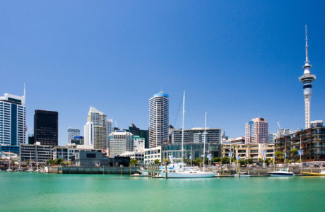 Auckland City Sights and Harbour Cruise Tour