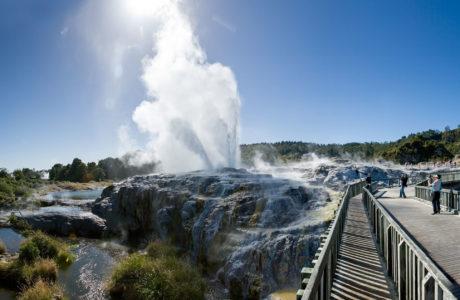 Waitomo and Rotorua Experience Tour