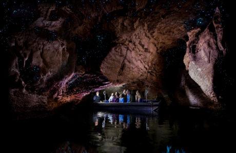 Te Anau Glowworm Caves Tour