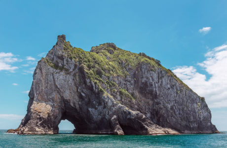 Bay of Islands Day Tour