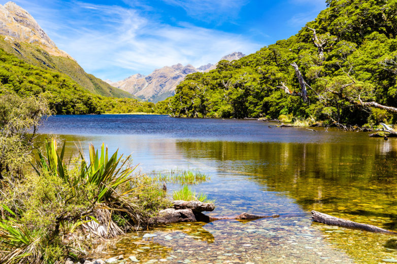Routeburn Track Tour