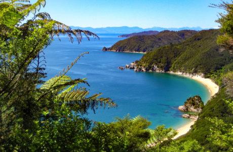 Abel Tasman Tours