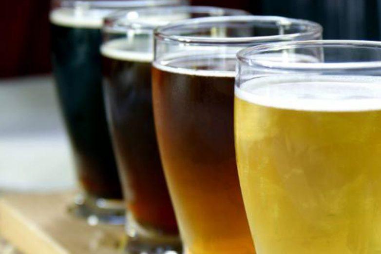 Auckland craft beer tours