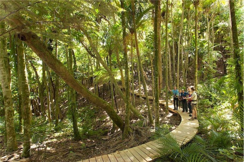 Ecozip, Waiheke Island