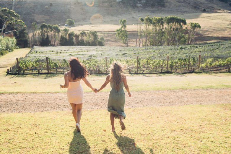 Stonyridge vineyard, Waiheke Island